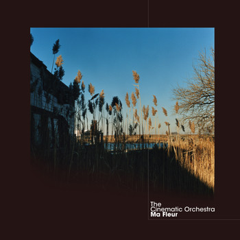 The Cinematic Orchestra - Talking About Freedom