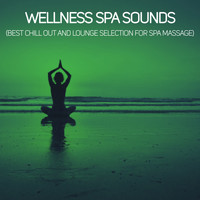 Various Artists - Wellness Spa Sounds (Best Chill Out  And Lounge Selection For Spa Massage)