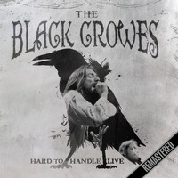 The Black Crowes - Hard To Handle - Live (Live: Houston, TX 6 Feb '93)