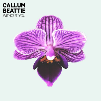 Callum Beattie - Without You