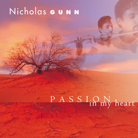 Nicholas Gunn - Passion in My Heart