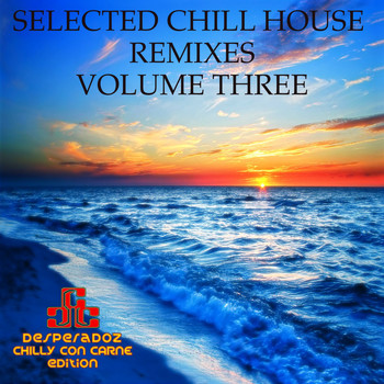 Various Artists - Selected Chill House Remixes, Vol.3 (BEST SELECTION OF LOUNGE AND CHILL HOUSE REMIXES)