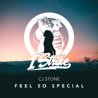 CJ Stone - Feel So Special