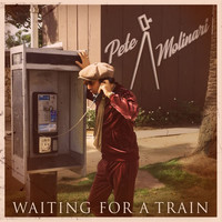 Pete Molinari - Waiting For A Train