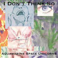 Aquamarine Space Unicorns - I Don't Think So