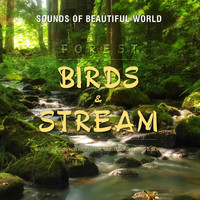 Sounds of Beautiful World - Forest: Birds & Stream (Nature Sounds for Relaxation Meditation Healing & Sleep)
