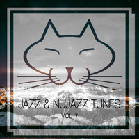 Various Artists - Jazz & Nujazz Tunes, Vol. 7
