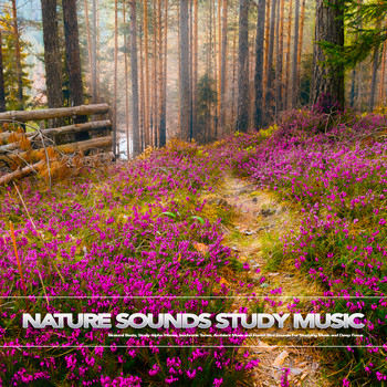 All albums by Study Music & Sounds, Binaural Beats Study Music