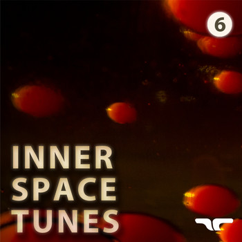 Various Artists - Inner Space Tunes 6