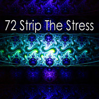 Forest Sounds - 72 Strip the Stress