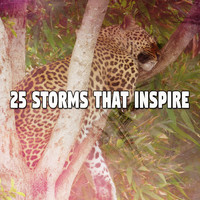 Rain Sounds Sleep - 25 Storms That Inspire