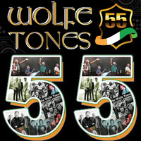 The Wolfe Tones - 55