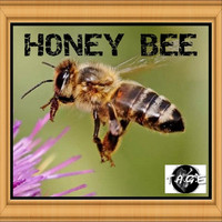 Tage - Honey Bee