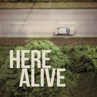 Summer Crowd Stereo - Here Alive (Explicit)