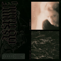 Assume Nothing - Signs of Misery