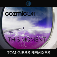 Cozmic Cat - This Moment