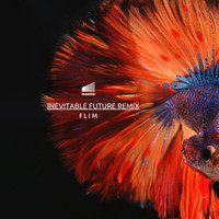 Flim - Inevitable Future Remix EP