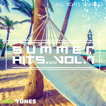 Various Artists - Summer Hits Dance Edition, Vol. 7