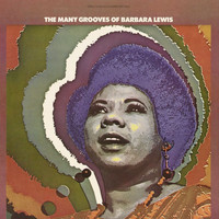 Barbara Lewis - The Many Grooves Of Barbara Lewis