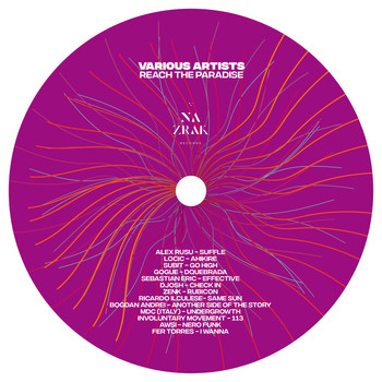 Various Artists - Reach The Paradise