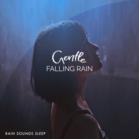 Rain Sounds Sleep - Gentle Falling Rain
