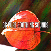Yoga - 66 Pure Soothing Sounds