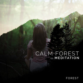 Forest - Calm Forest Meditation