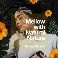Natural Sounds - Mellow with Natural Nature