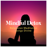 Relaxation Meditation Songs Divine - Mindful Detox