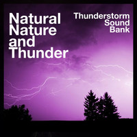 Thunderstorm Sound Bank - Natural Nature and Thunder