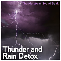 Thunderstorm Sound Bank - Thunder and Rain Detox