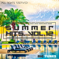 Various Artists - Summer Hits Dance Edition, Vol. 12