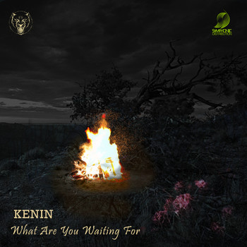 KENIN - What Are You Waiting For
