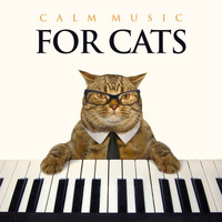 Cat Music, Music For Cats, Music for Pets - Calm Music For Cats: Relaxing Piano Background Music For Cats, Music For Pets, Pet Relaxation and The Most Relaxing Cat Music