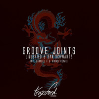Liquefied, San Schwartz - Groove Joints