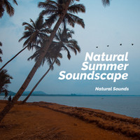 Natural Sounds - Natural Summer Soundscape