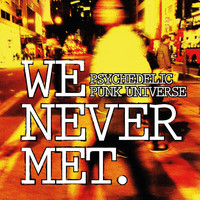 We Never Met - Psychedelic Punk Universe