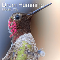 Electric Olly - Drum Humming