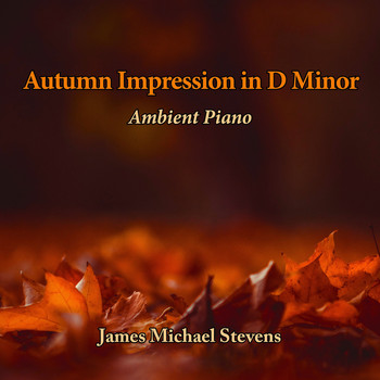 James Michael Stevens - Autumn Impression in D Minor - Ambient Piano