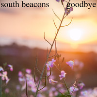 South Beacons - Goodbye