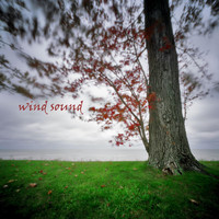 Background Noise From TraxLab - Wind Sound