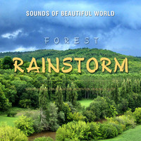 Sounds of Beautiful World - Forest: Rainstorm (Nature Sounds for Relaxation, Meditation, Healing & Sleep)