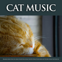 Cat Music, Music For Cats, Music for Pets - Cat Music: Relaxing Music For Cats, Music For Kittens, Music For Pets While You're Away and The Best Music For Your Cat