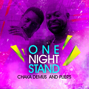 Chaka Demus & Pliers - One Night Stand