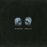 The Beloved - Satellite