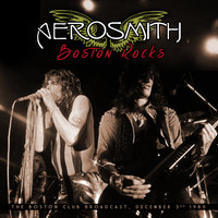 Aerosmith - Boston Rocks (Live)