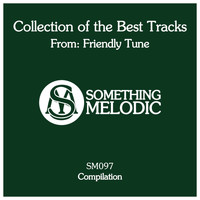 Friendly Tune - Collection of the Best Tracks From: Friendly Tune