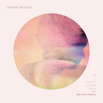Shawn Mendes - If I Can't Have You (Gryffin Remix)