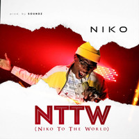 Niko - N.T.T.W (Niko to the World)