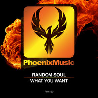 Random Soul - What You Want